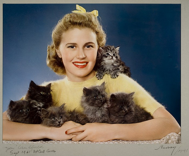 young woman surrounded by kittens